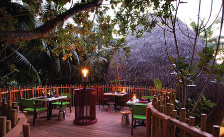 Anantara _ Niyama _ Private _ Islands _ Nest _ Restaurant