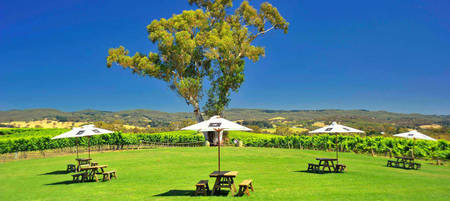 Adelaide Hills & Hahndorf Hop On Hop Off Tour