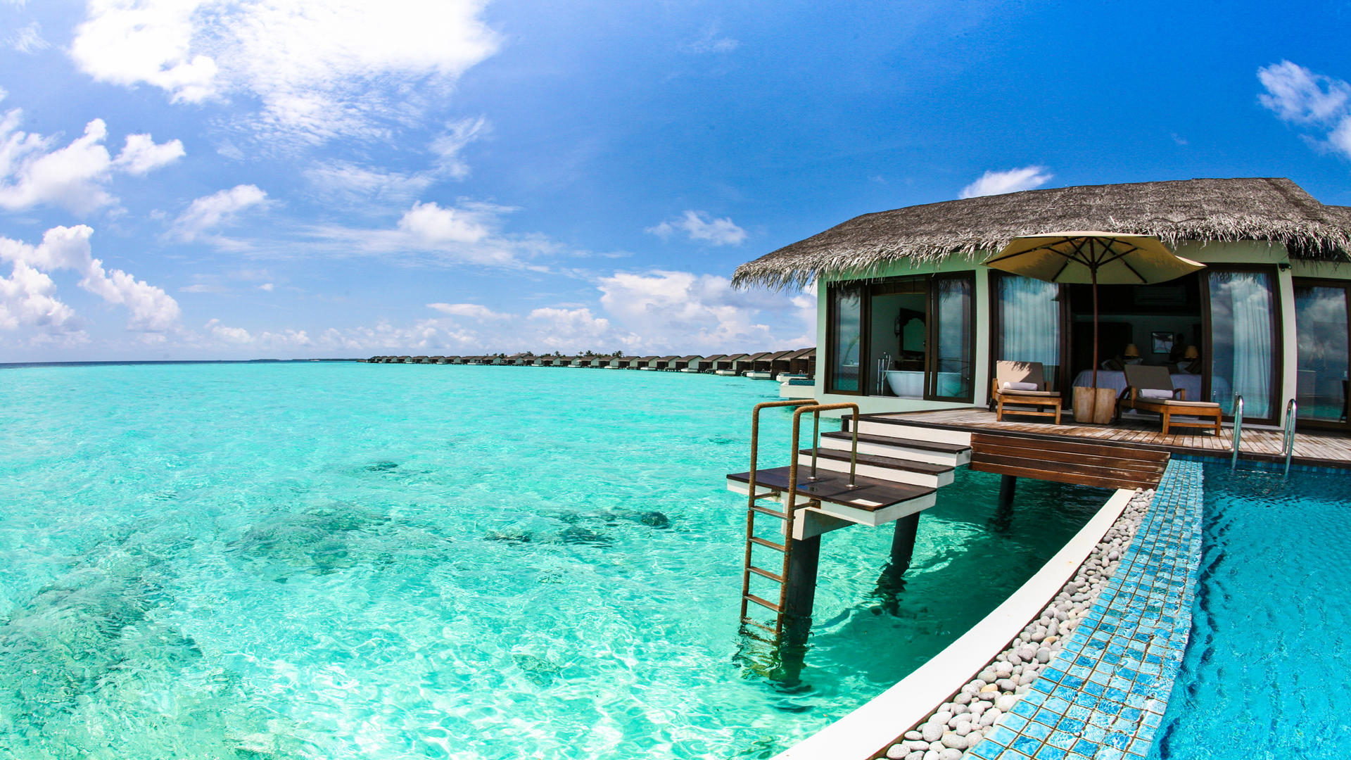 Cenizaro_ResidencesMaldives_Water — — 游泳池 — — 别墅 — — 可俯瞰