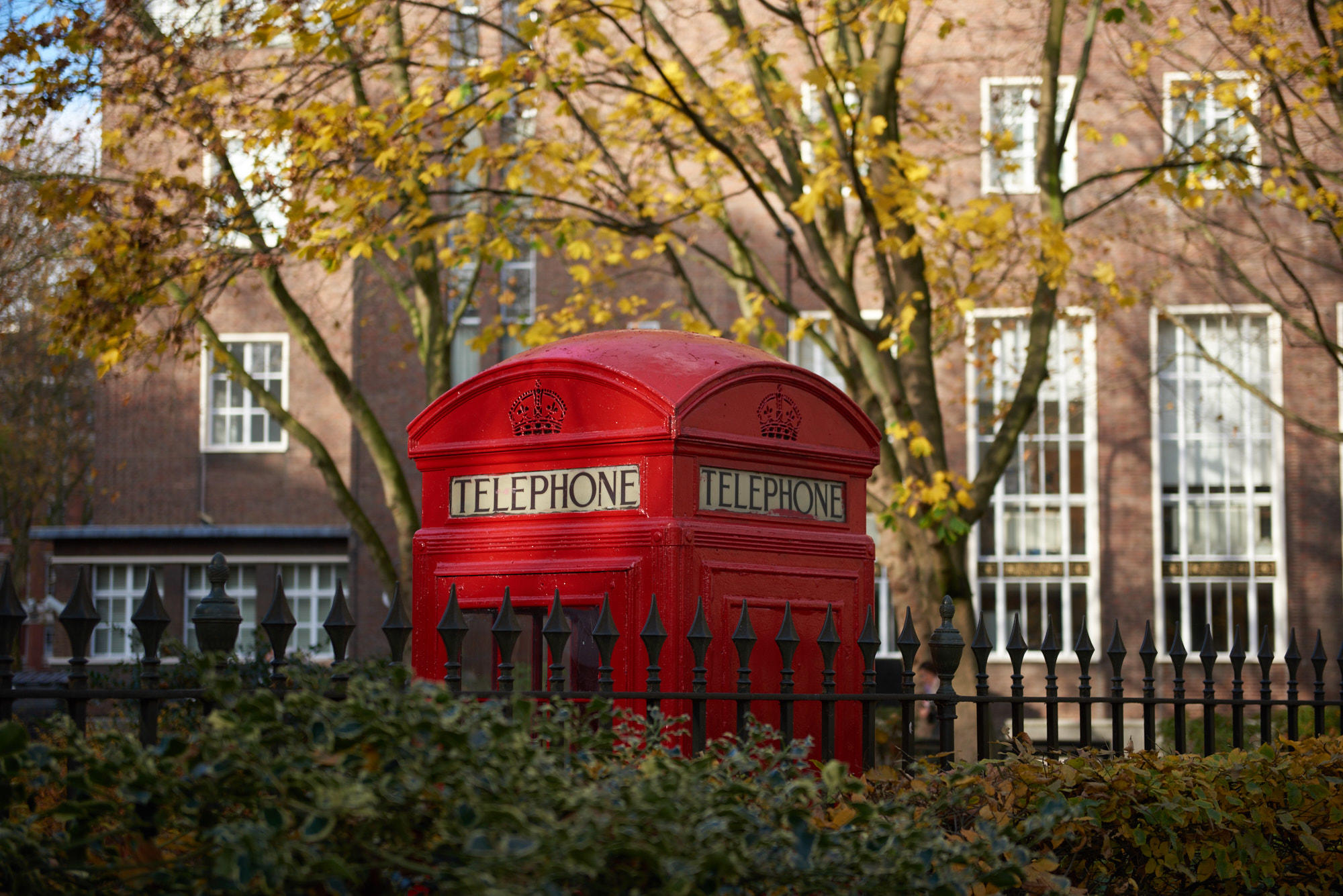 Bloomsbury - Platinum - Discover London With a Host