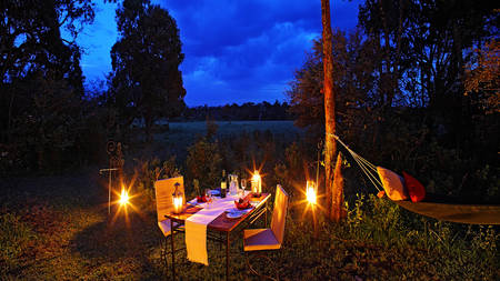 Elephant-Pepper-Camp---Bush-dinner