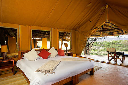 Lewa _ Safari _ Camp _ Luxy _ 帐篷
