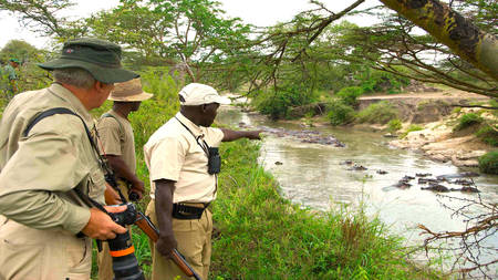 Serengeti-Migration-Camp---Guided-Walks-1-