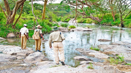 Serengeti-Migration-Camp---Guided-Walks-Grumeti-River