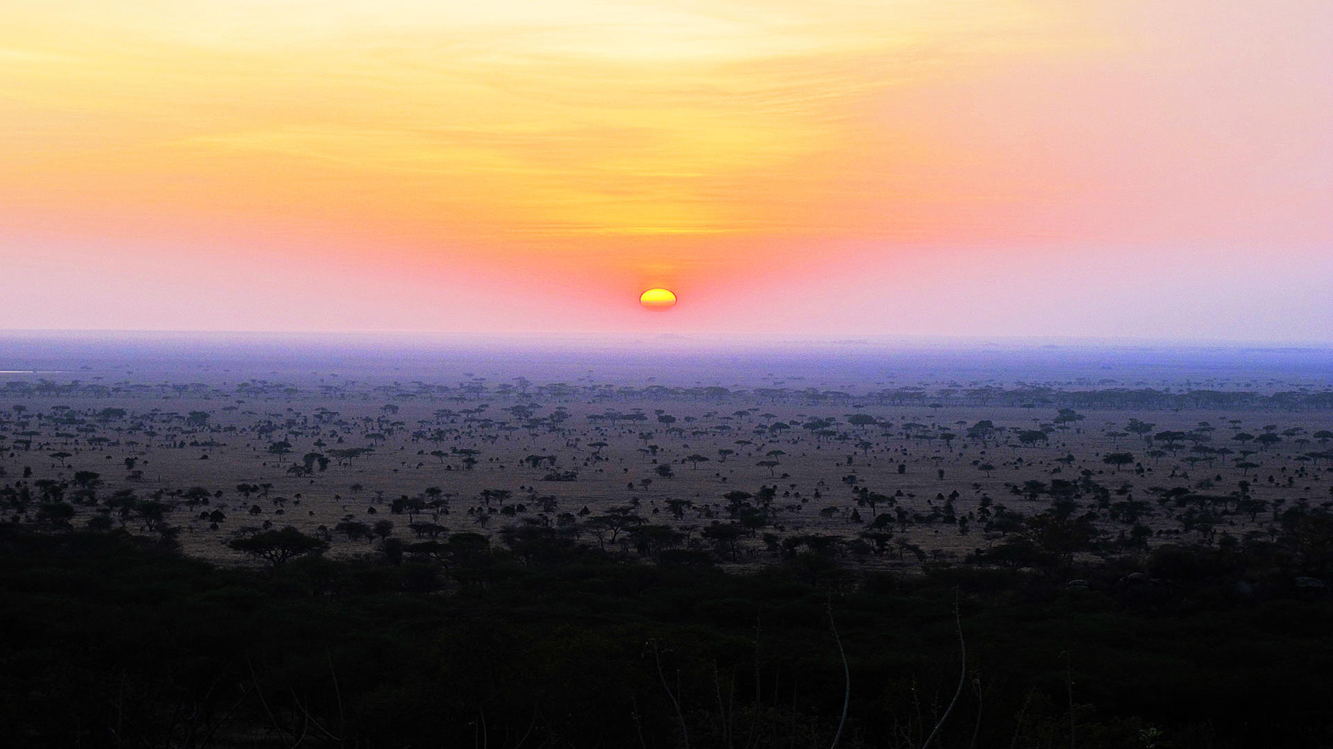 Serengeti-Pioneer-Camp---Sunrise-2