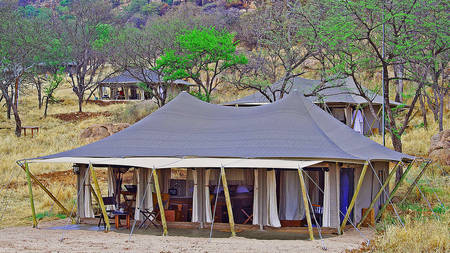 Serengeti-Pioneer-Camp---Tent-Camp-view
