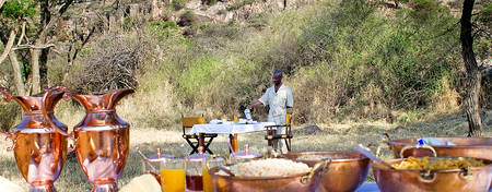 EL-Serengeti-Migration_Bush-Breakfast