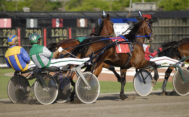 FirstMartenson_Harness-Racing