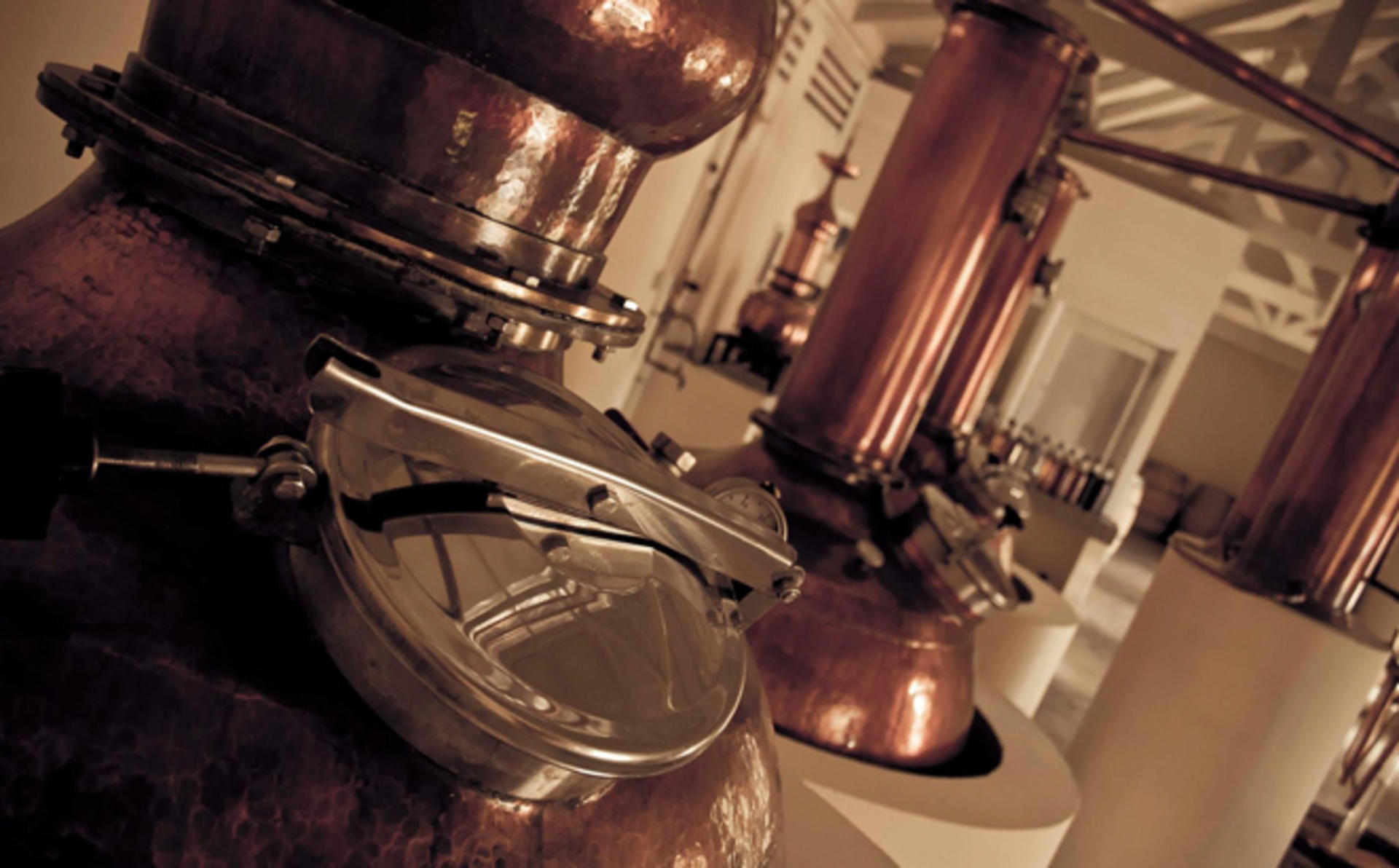 Private_Tour_Distillery