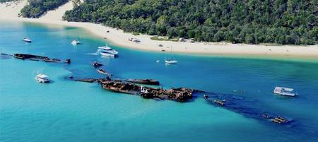 Dolphin & Tangalooma Wrecks Cruise with Gold Coast Transfers