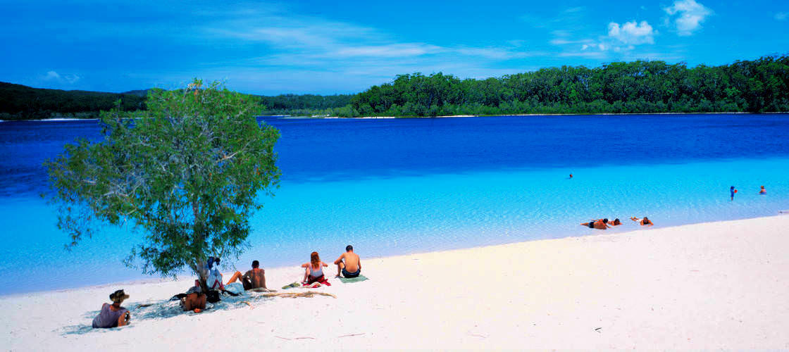Fraser Island 1 Day Tour from Sunshine Coast
