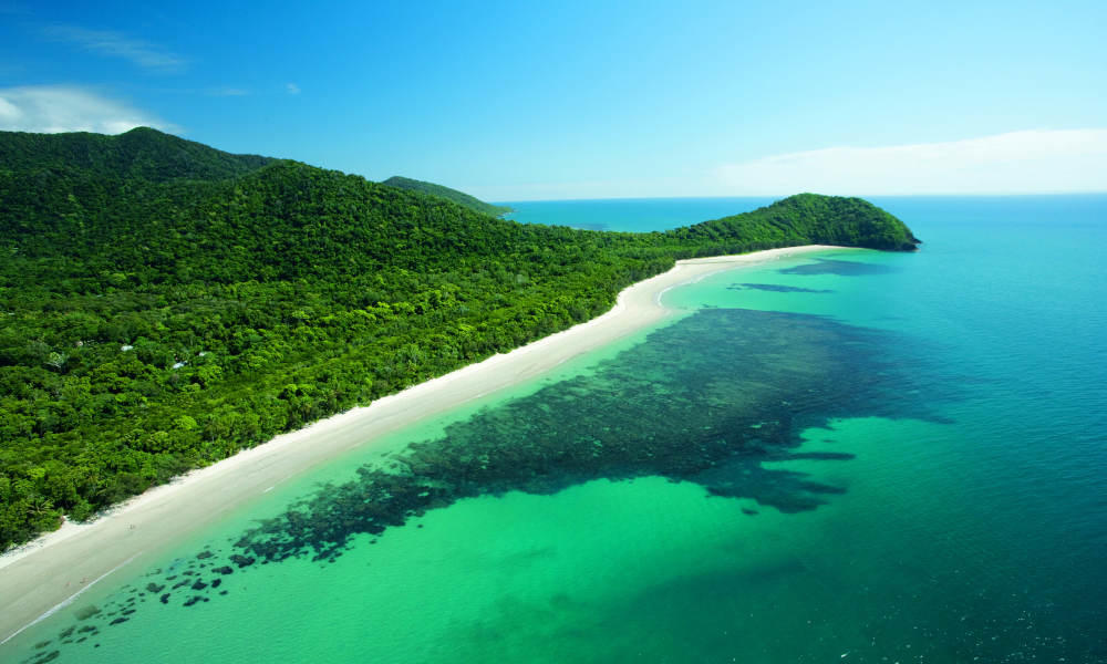Cape Tribulation Day Tour for 1 adult