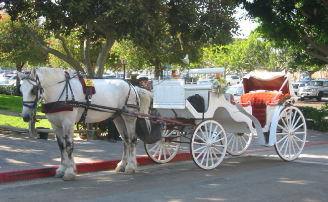 Private Carriage Ride