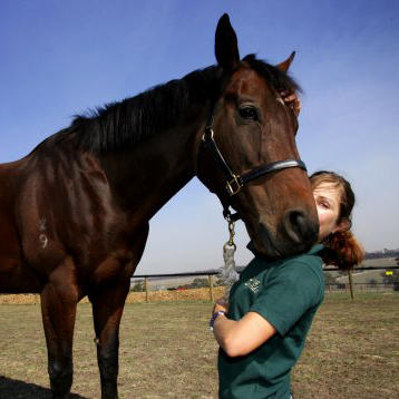 Horse caring at Living Legends