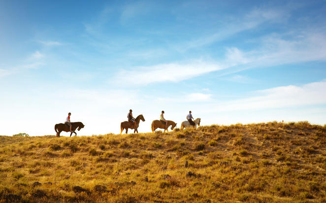 Rydges_Port-Macquaire_Horse-Riding-Tour