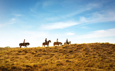 Rydges_Port-Macquaire_Horse-Reiten-Tour