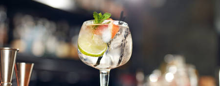 TH-Brussels-City-Centre_Gin-tonic-tasting