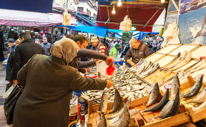 Tivoli-Marina-Portimao_tour-to-a-local-fish-market