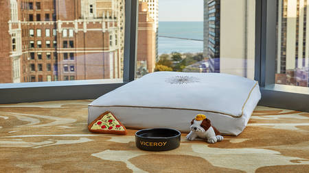ViceroyChicago_PetCushion