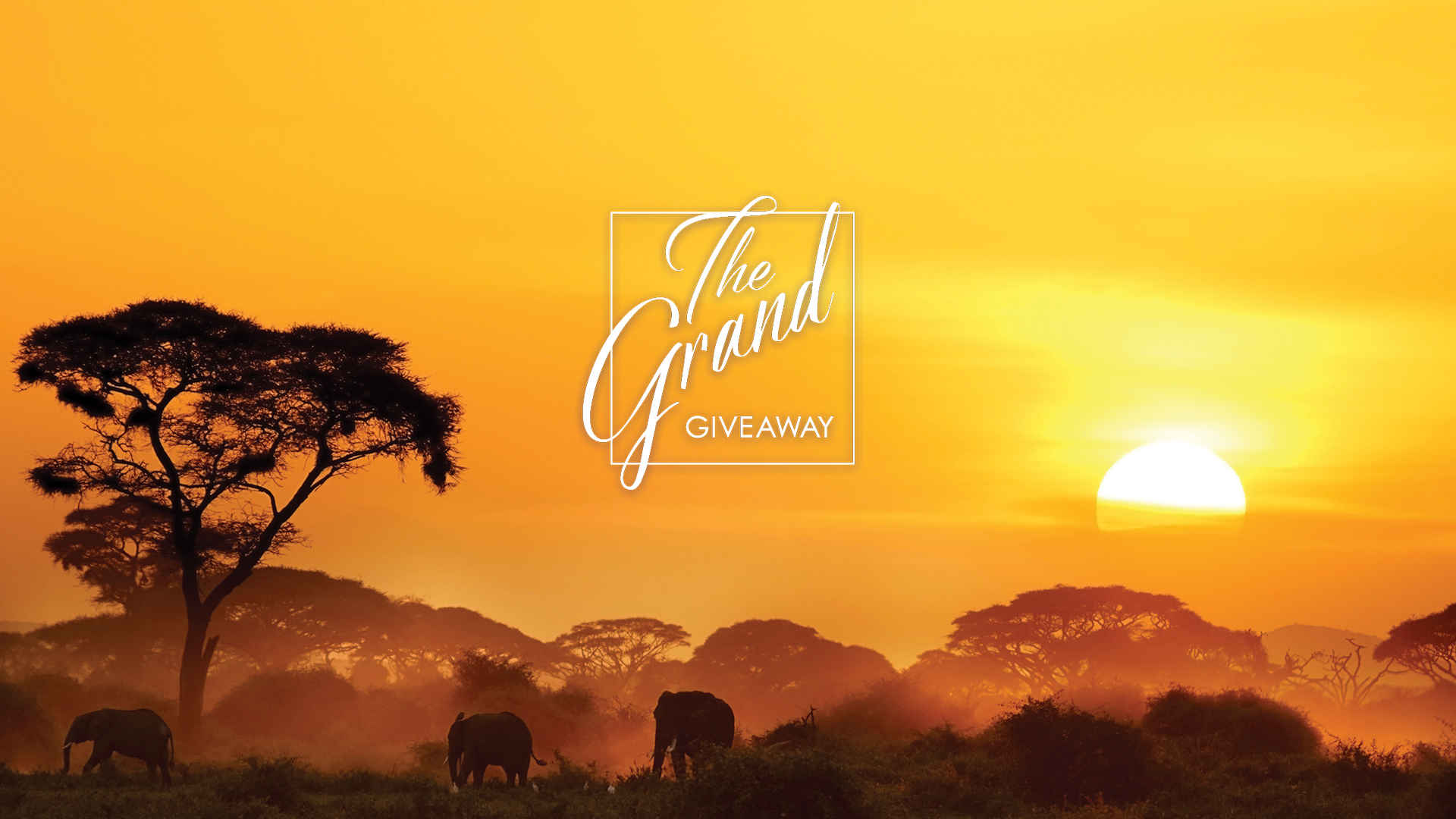 DISCOVERY _Grand_Giveaway_6